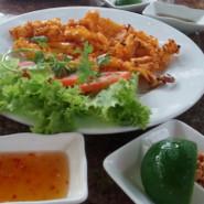 Hoang Tuan squids